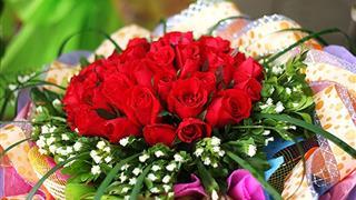 Loài hoa đẹp và mang ý nghĩa sâu sắc tặng thầy cô ngày 20/11