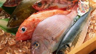 Mẹ sau sinh nên và không nên ăn những loại cá gì?
