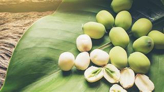 Bà bầu ăn hạt sen không chỉ trị chứng mất ngủ mà còn vô số lợi ích cho sức khỏe này